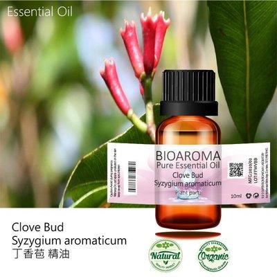【芳香療網】丁香苞精油Clove Bud - Syzygium aromaticum  10ml