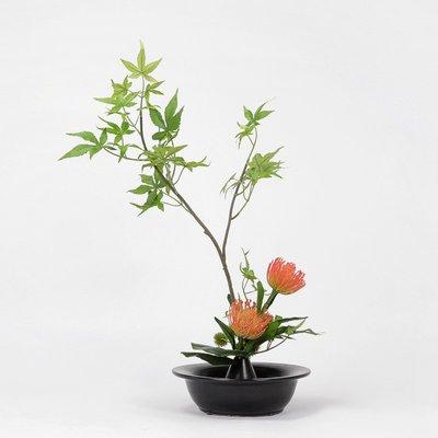 千禧禧居~新中式仿真綠植物花藝盆景客廳茶幾樣板間酒店售樓處軟裝飾品擺件