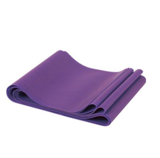 """【線上體育】TPE拉力繩.4""""×6""""L-淡紫.重.SpiritTCR商標"""