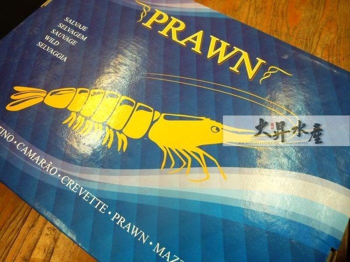 【大昇水產】紅海的奇績/活體急凍/各大飯店指定愛用_野生海藍鑽蝦2kg/盒