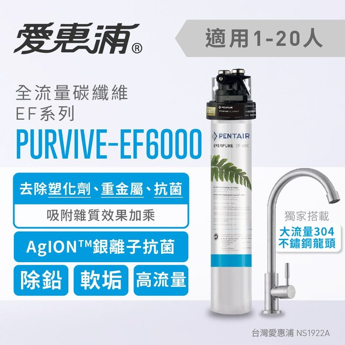 (全省免費原廠安裝) 愛惠浦 Everpure PurVive-EF6000 全流量型