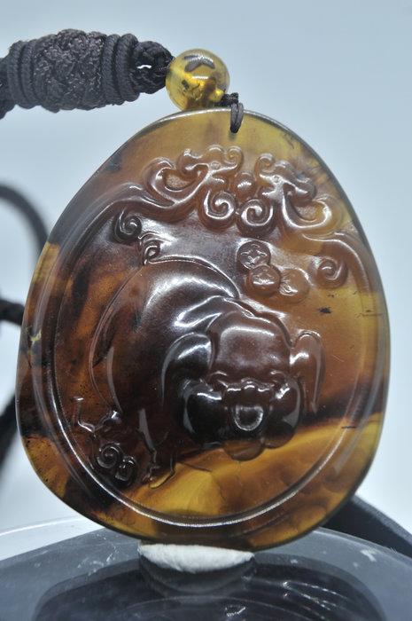 緬甸琥珀 棕紅珀 紫羅蘭珀 金棕珀 金棕珀大豬牌