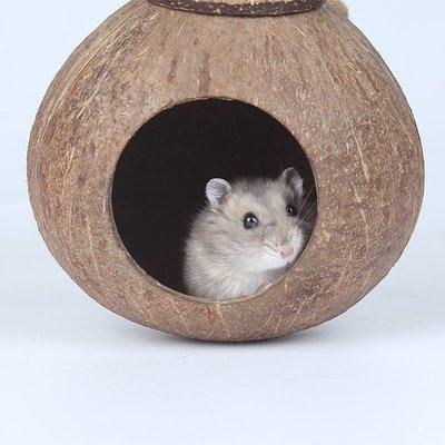 雜貨小鋪 椰子殼倉鼠窩寵物保暖用品刺猬松鼠金絲熊睡窩小窩蜜袋鼯屋小房子