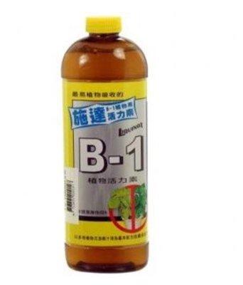 施達活力素B1(液肥)300cc