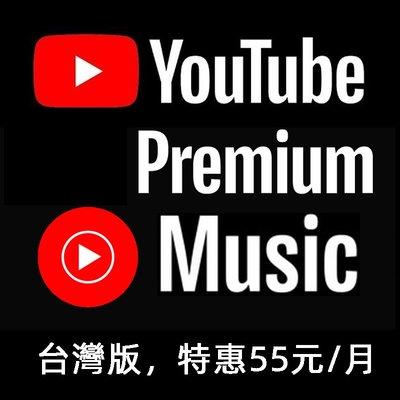 YouTube Premium會員 台灣版 國際版 獨享 共享 一年