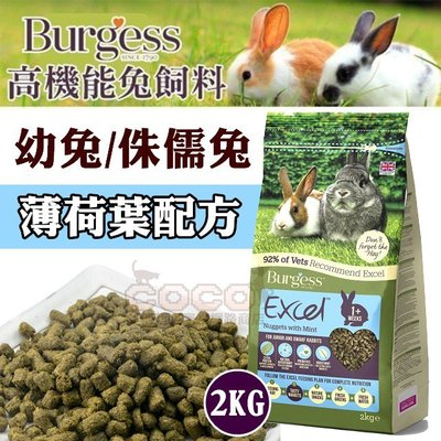 *COCO*伯爵Burgess高機能兔飼料-幼兔2kg適合侏儒兔/懷孕母兔/兔子主食,含苜蓿草&多種草本植物