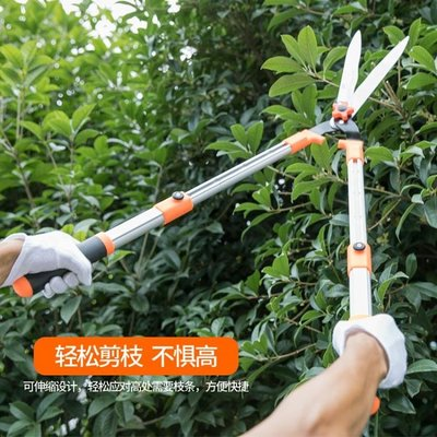園林綠化花木修剪刀園藝剪刀綠籬剪樹枝修枝剪籬笆剪花剪大剪刀