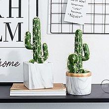 〖洋碼頭〗現代簡約仙人掌仿真綠植盆栽擺件創意家居客廳置物架假植物小盆景 fjs738