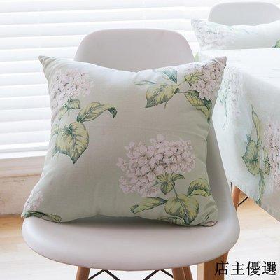韓系清新田園風純棉純棉抱枕靠墊套大號床頭沙發腰枕靠枕套靠背