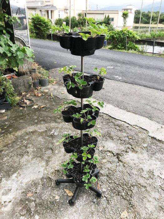 *移動菜園*五層附輪立體植栽花盆,草莓塔蔬菜塔,適合都市農夫陽台有機種植、農場大量栽種,栽培塔/立體種菜箱/盆栽園藝資材