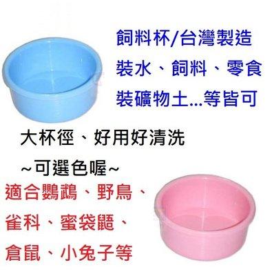 台灣製造飼料杯/大杯徑好用好清洗//裝水、飼料、零食、礦物土皆可/適合所有鳥種、蜜袋鼯、倉鼠、小兔子等