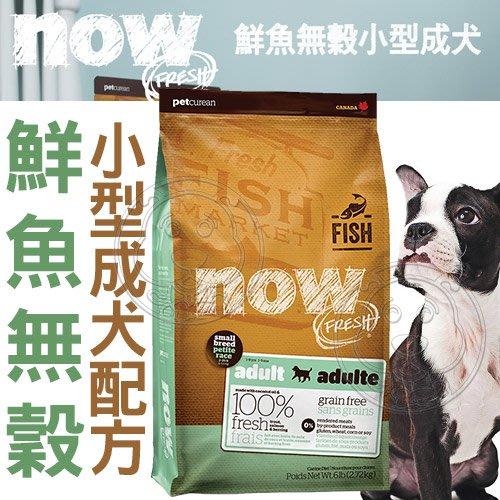 【🐱🐶培菓寵物48H出貨🐰🐹】Now》鮮魚無穀天然糧小型成犬配方-6磅 特價1490元(自取不打折)