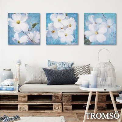 TROMSO-時尚無框畫-W220淨藍花羽40x40cm/藝術 小白 夏天客廳掛畫大樹小屋【H0309299】S9