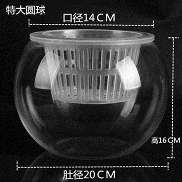 #創意 裝飾品 居家[特大號]水培植物玻璃瓶 水培綠蘿花瓶花盆玻璃圓球 魚缸容器。