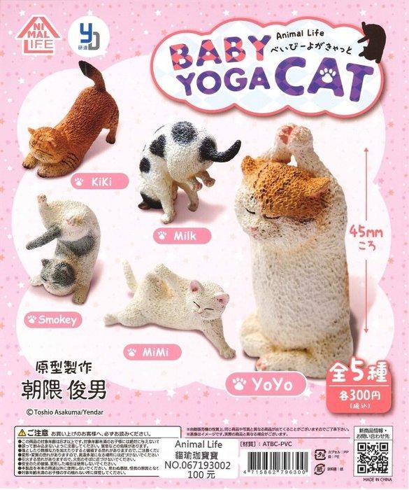 【扭蛋屋】朝隈俊男 Animal Life 貓瑜珈寶寶 《全5款》
