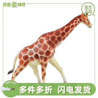 溜溜RECUR重現 兒童玩具軟膠仿真野生小動物長頸鹿獅子王狼老虎模型