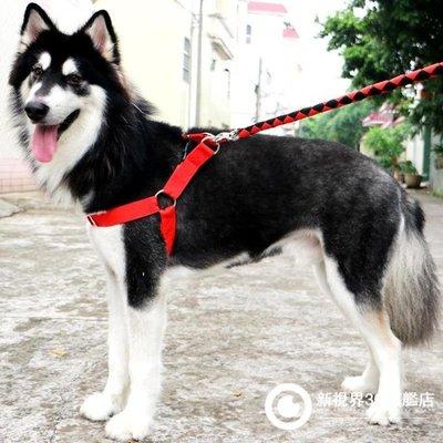 狗狗牽繩小狗鏈子項圈金毛阿拉斯加中型大型犬遛狗繩子寵物用品