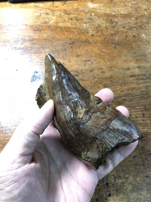 {沉之風華} 印尼 嘉雅不拉產區 沉水件