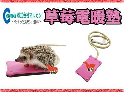 **貓狗大王**日本Marukan《草莓電暖墊》鼠鼠專用│超級省電 (RH-1025) 特價499元