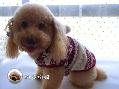 狗衣狗服│【秋冬款】cute雪花絨毛連帽背心/保暖外套-紅色S號(珊瑚絨內裡,另售大狗尺寸)
