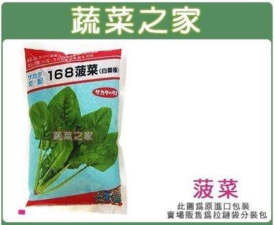 【蔬菜之家】A06.菠菜種子500顆(F1.淡綠色寬葉.葉炳粗長.產量高.生育快速.耐暑.耐寒.耐病,容易栽培.蔬菜種子