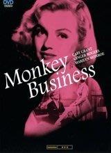正版全新DVD~妙藥春情 Monkey Business (1952) ~ 瑪麗蓮·夢露+卡萊·葛倫 ~繁中字幕