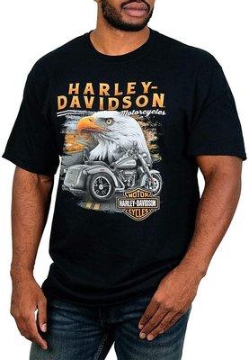 Harley-Davidson 哈雷機車 短袖T恤【S】Trike Eagle 全新 現貨