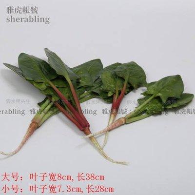 (MOLD-A_011)高仿真蔬菜假水果蔬菜模型飯店酒店裝飾品食品拍攝道具仿真菠菜