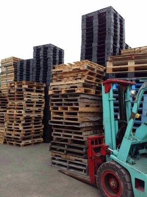 {富通行}專營各類尺寸中古 二手 塑膠棧板 木製棧板 長期買賣 好市多 『COSTCO』 中古棧板