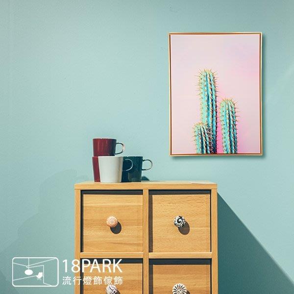 【18Park 】精緻細膩 cactus [ 畫說-Fun仙人掌-50*70cm(粉紅) ]