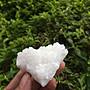 【小川堂】淨化 巴西 原礦(11) 正能量 純天然 清料 白水晶簇 鱷魚 骨幹 水晶 84.5g 附木座