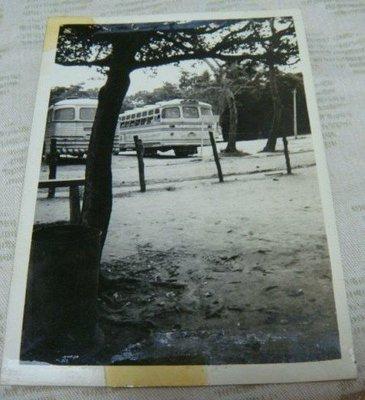 【早期老照片】民國50年代  遊覽車 6.5X9 公分
