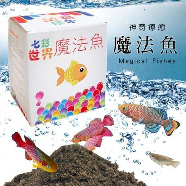 神奇療鬱魔法魚 魔法土 魚水共生 簡單易養殖 孵卵 飼養 卵生 親子遊戲 養魚 孵蛋 寵物 餵養 教導 禮物 獎品 撈魚