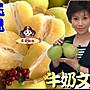 文旦妹妹- 極品牛奶文旦65年老欉柚子免運費中...