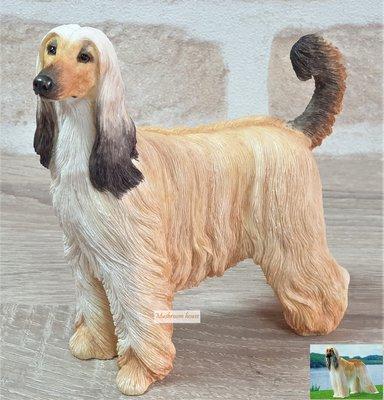 點點蘑菇屋 歐洲精品精緻阿富汗獵犬擺飾 Afghan Hound 米灰褐色 小狗家飾 可愛動物 鄉村風雜貨 現貨