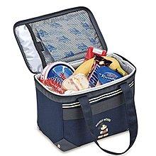 (現貨)日本THERMOS膳魔師 米奇 5層斷熱 5L保冷袋 母乳袋 便當袋REH-005DS