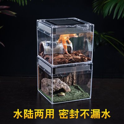 Barbarous爬寵飼養箱雨林缸蜥蜴守宮角蛙寄居蟹飼養盒玻璃生態缸#居家必備