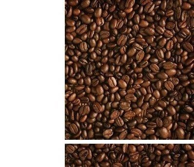 ☼☼ 咖啡豆 一磅(曼巴)