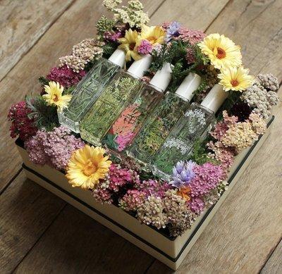 JO MALONE 英倫運河花草 30ml 限量 香水 Wild Flowers Weed 現貨剌檜與雪松木