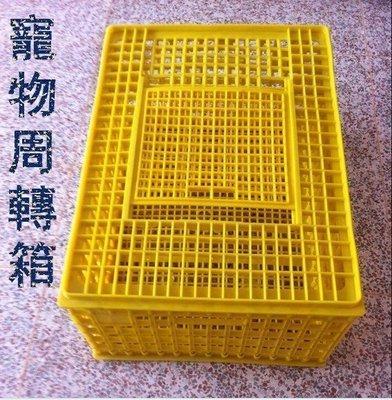 【優上精品】塑料雞籠 塑料運輸籠鴨籠鵝籠家用雛雞籠成雞籠周轉成雞箱(Z-P3243)