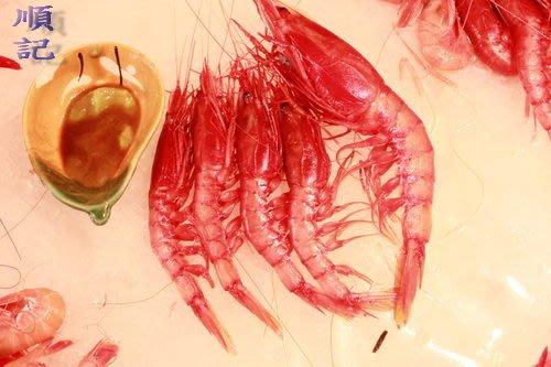 東港順記 現撈  胭脂大甜蝦 甜中帶Q的鮮美滋味 (生食級商品)(漁船當日捕撈)大*2台斤+特大1台斤