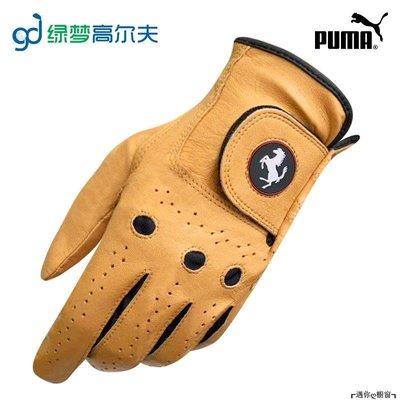 ┎遇你ღ櫥窗┒ 高爾夫手套PUMA高爾夫手套法拉利聯名款GOLF男士單支左手手套小羊皮柔軟舒適自然