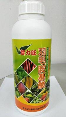 綠世紀-賀力旺羽毛胺基酸 1公升