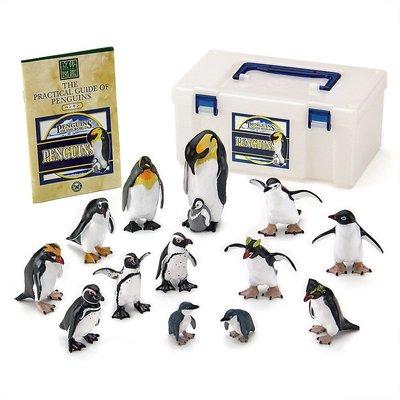 日本正版 立體圖鑑擬真模型BOX 企鵝 12種組 小模型 小公仔 日本代購