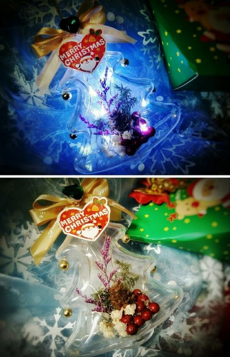 獨家設計   聖誕禮物  乾燥花 發光聖誕樹 瓶中花  交換禮物 發光罐  許願瓶  聖誕樹 聖誕節 朵希幸福烘焙