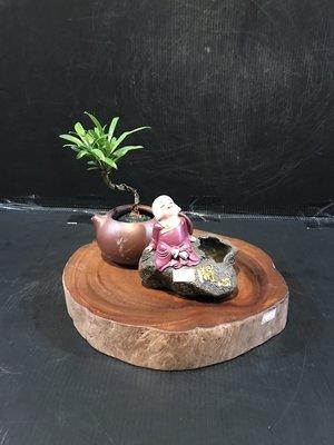 【 檜人檜語 】紅雞油 原木座A1
