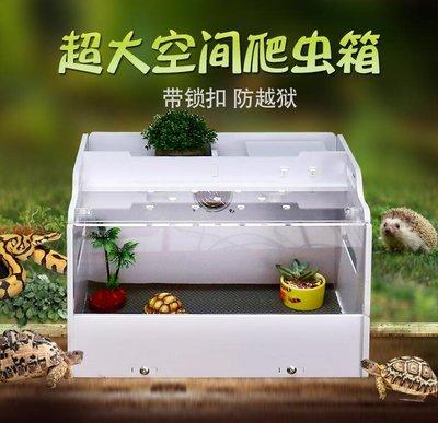 陸龜箱保溫箱刺猬蛇爬箱亞克力透明飼養箱盒寵飼養箱鬃獅蠍子守宮