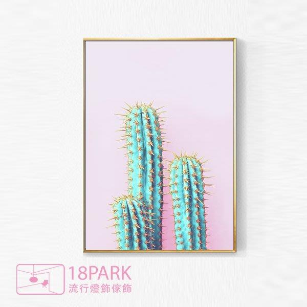 【18Park 】精緻細膩 cactus [ 畫說-Fun仙人掌-70*100cm(粉紅) ]