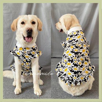 寵物之家夏季甜美小雛菊大狗連身裙阿拉斯加衣服法斗裙子洋裝金毛狗狗秋裝薄款