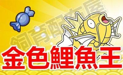 【飼育配布屋】神奇寶貝 寶可夢 太陽 月亮 金色 異色 色違 鯉魚王 配信 日月 任天堂 皮卡丘 配布 N3DS